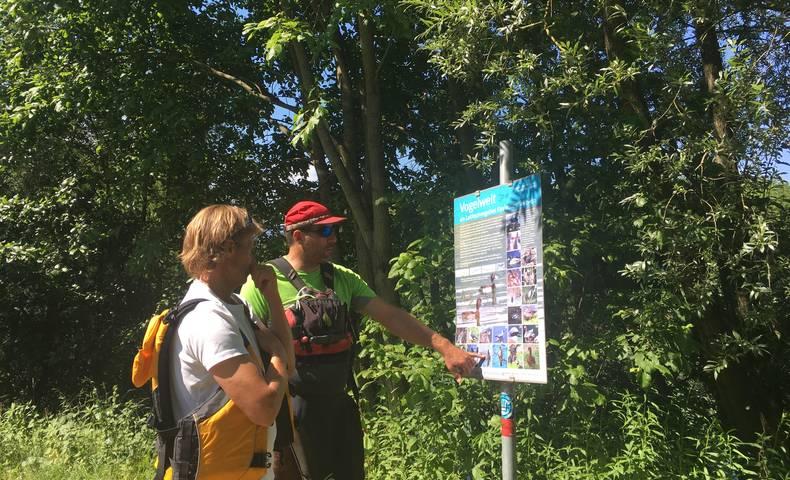 <p>Urlaub im Wohnmobil von Ute Zaworka, Kajaktour am Ossiacher See, Laichschongebiet Ossiacher See</p>