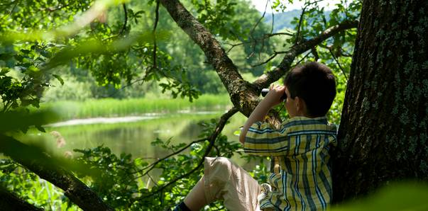 Kärnten Naturerleben