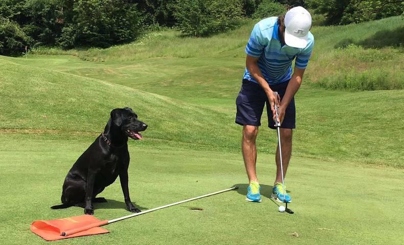 <p>Golfen mit Hund</p>