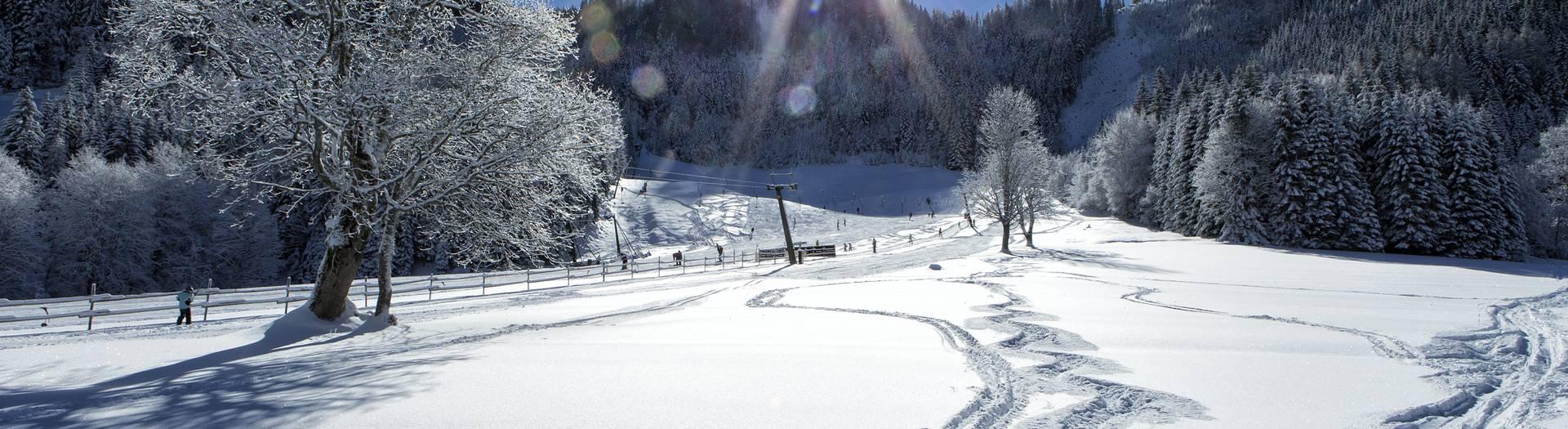 Bodental Rosental