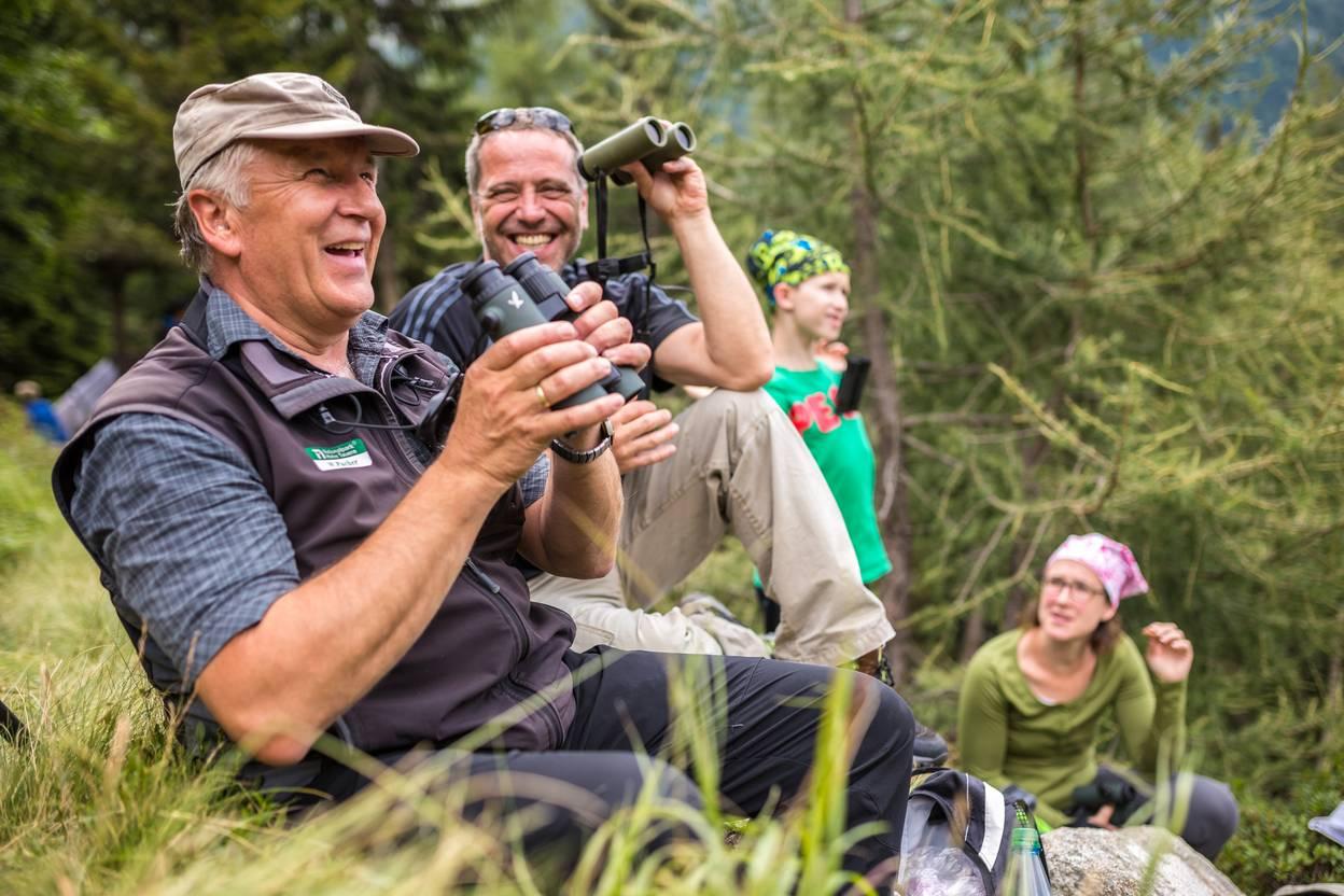 <p>Magische Momente Sommer, Rotwildbeobachtung in Mallnitz</p>