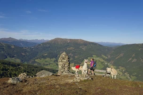 Lamatrekking am Katschberg